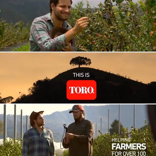 Some stills of Toro's advertising. Chec
