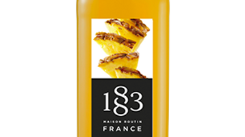 1883 Ananas 1L