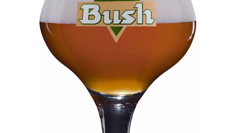Verre Bush