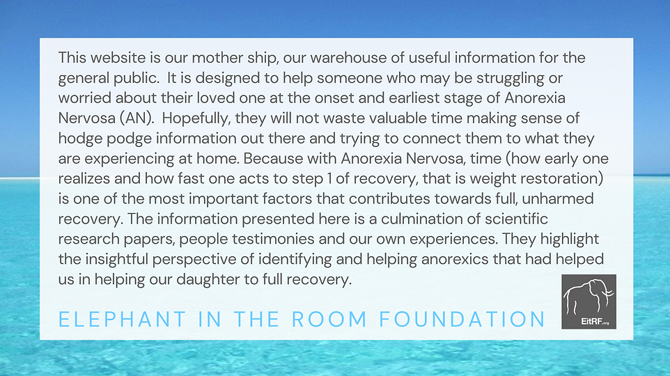 Text explaining the EitRF's goal of supporting those with anorexia nervosa (AN).