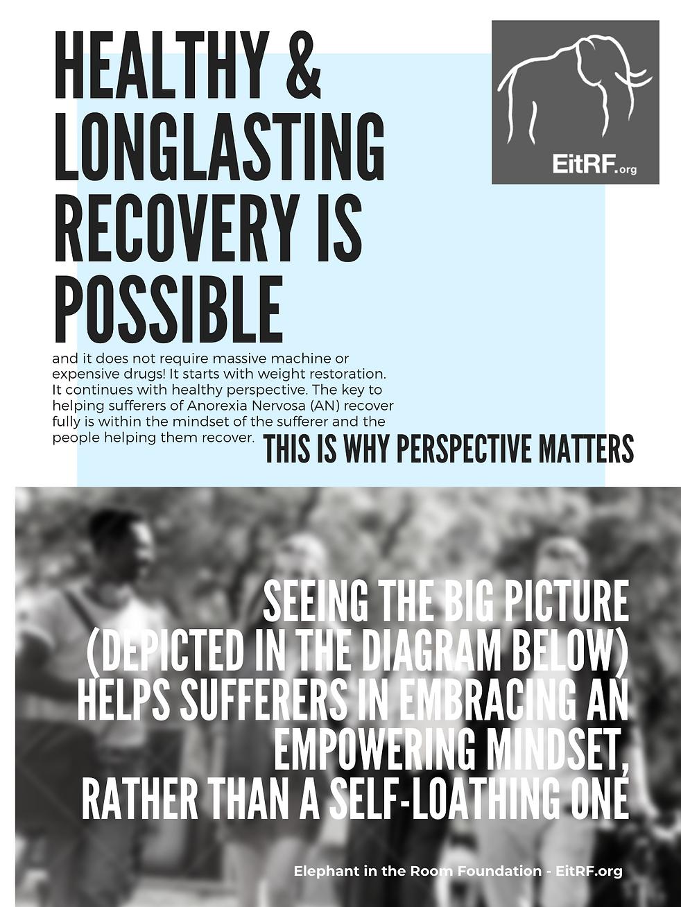PerspectiveMattersDiagram.png