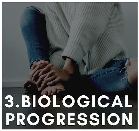 BiologicalProgression.png