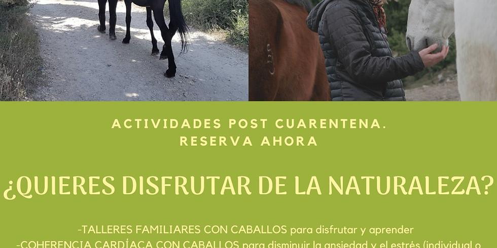 ACTIVIDADES EN LA NATURALEZA/NATURAN EKINTZAK