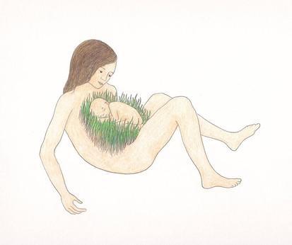 les végétales 7