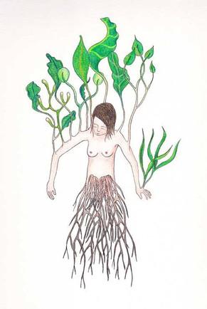 les végétales 15