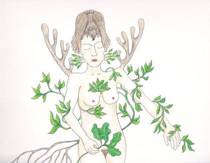 les végétales 3