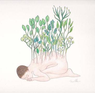 les végétales 12