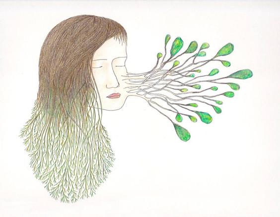 les végétales 4