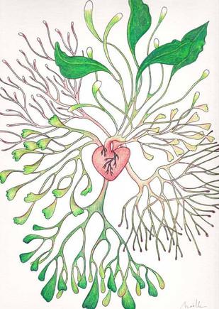 les végétales 11