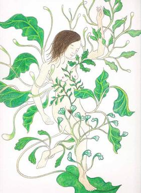 les végétales 9
