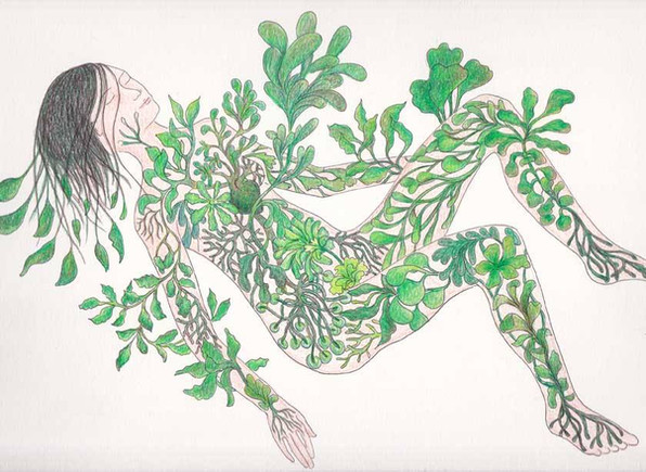 les végétales 14