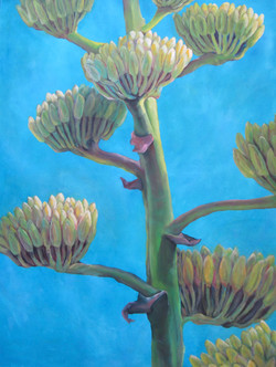 Alicia's Agave - SOLD