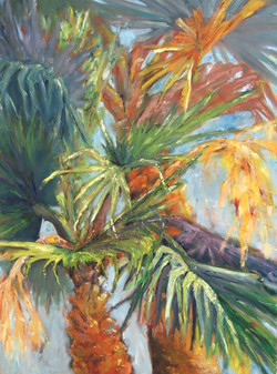 Palms-North 76th Place - SOLD