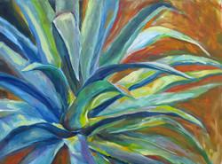 Arizona Agave II
