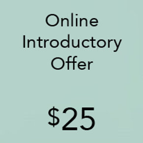 Online Introductory Offer