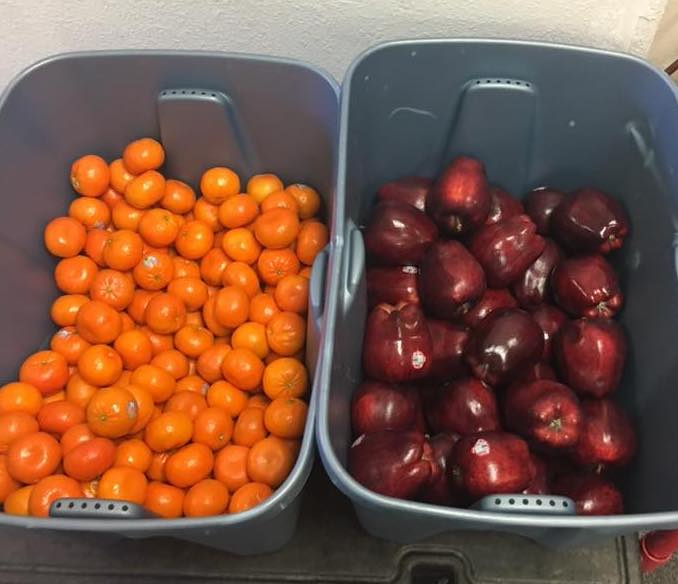 Fruit Gift for Manokotak