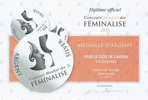 2014, Argent - Concours Féminalise