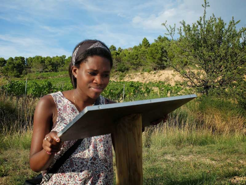 Organic winegrowing explained