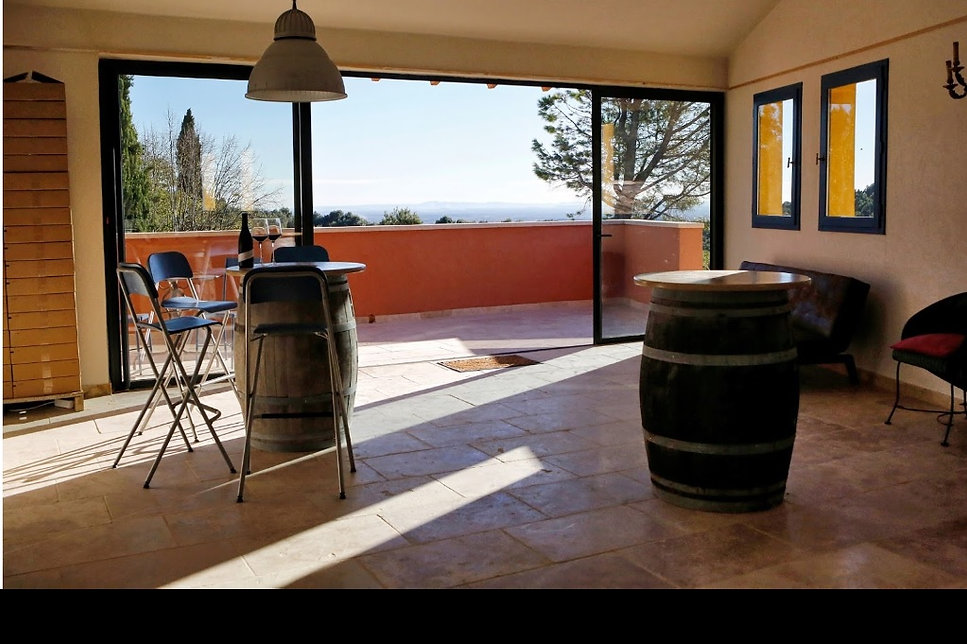 wine tasting with great view overlooking vineyard. Group events. wine tasting classes. food and wine pairing