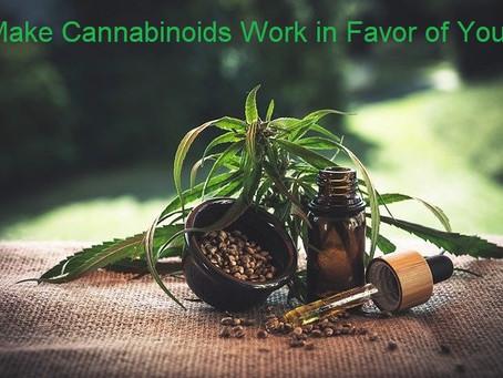 Make Cannabinoids Work in Favor of You