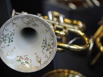 Détail pavillon cornet Guichard