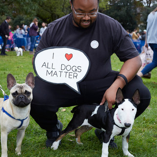E5 Dog Photography - All Dogs Matter - 30
