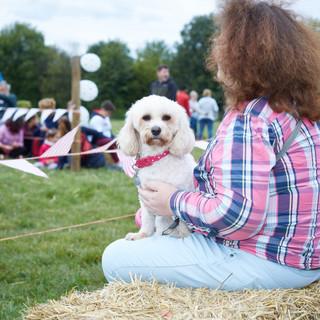 E5 Dog Photography - Mudchute