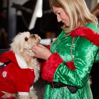 Santa Paws Doggy Brunch 2017 - 50