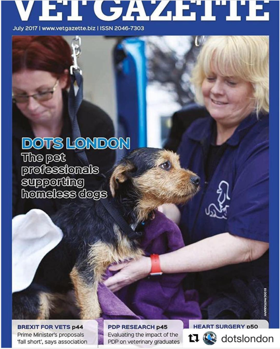 E5 Dog Photography for Dots London