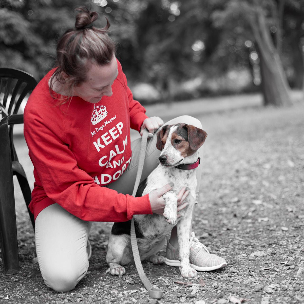 E5_Dog_Photography_ADM_DogFactor_2017_469 1
