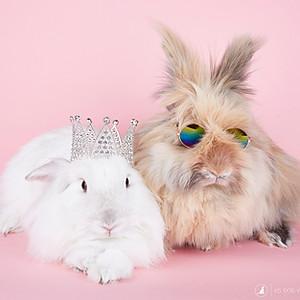 Bessie & Bijou