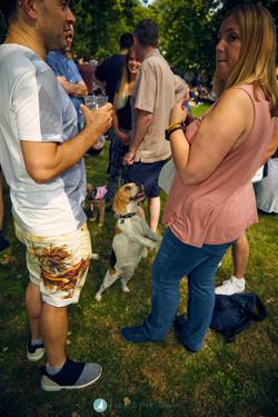 Visions_Festival_Hackney_Dog_Show