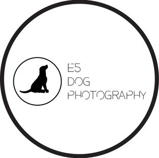 E5 Dog Photography