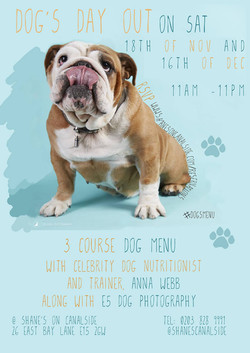 Dog's Day out 18 Oct 2017 London