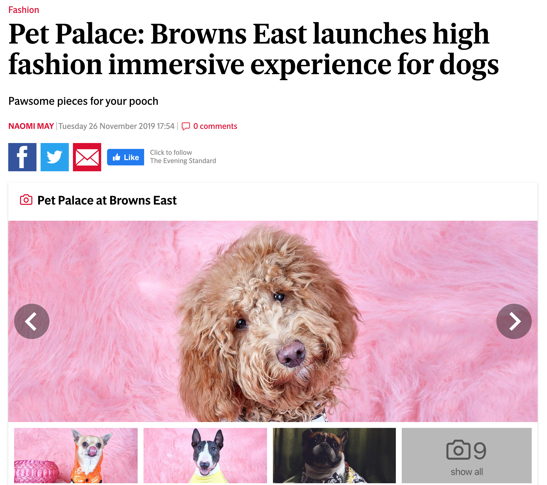 Pet Palace at the Browns Fashion