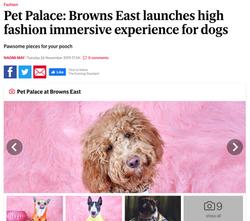 Pet Palace at the Browns Fashion