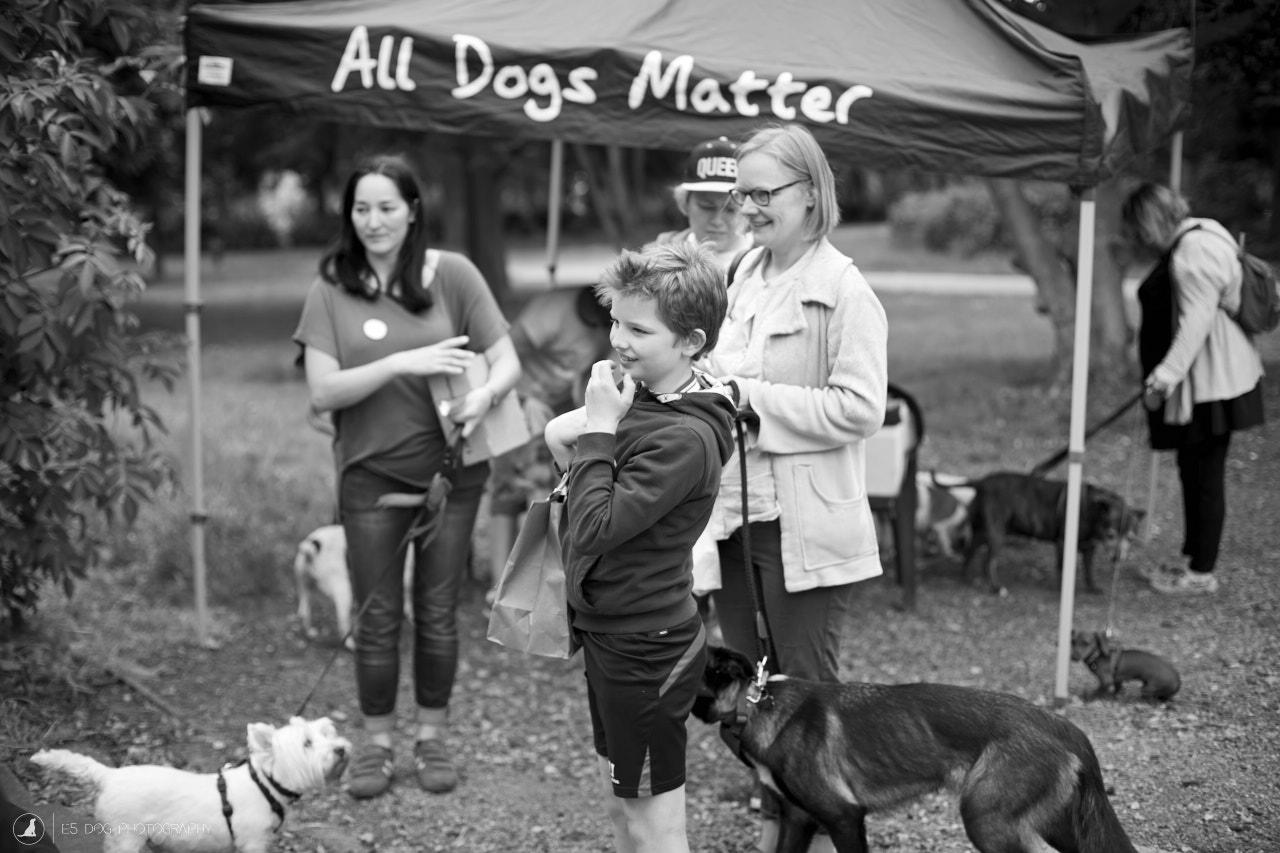 E5_Dog_Photography_ADM_DogFactor_2017_495 1