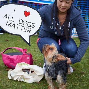 E5 Dog Photography - All Dogs Matter - 24