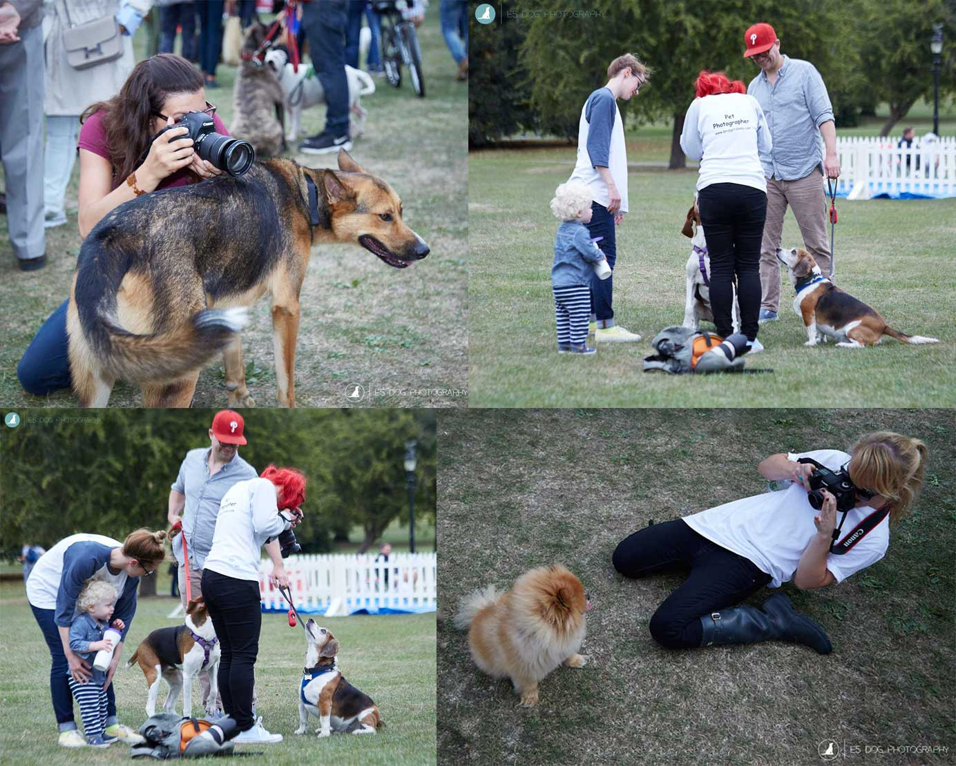 E5_Dog_Photography_PupAid_Primrose_Hill_2016_005