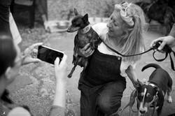 E5_Dog_Photography_ADM_DogFactor_2017_455 1
