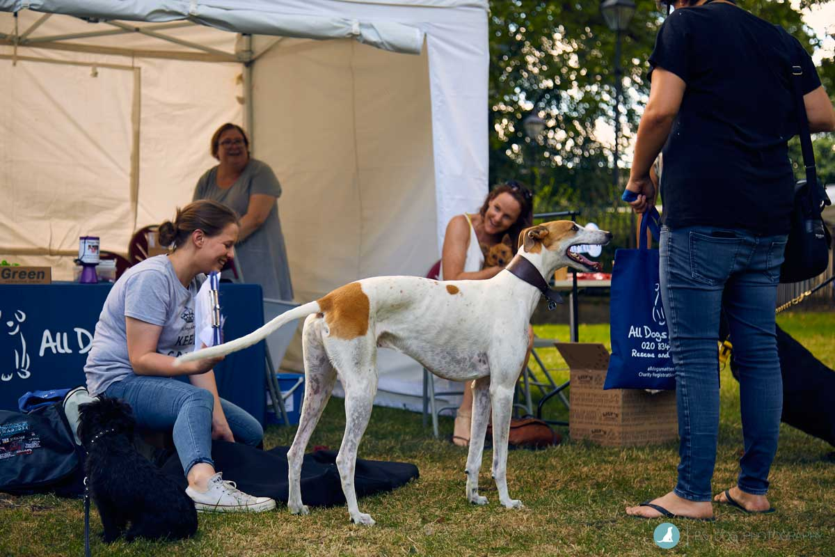 E5-Dog-Photography-All-Dogs-Matter-Visions-Festival-Hackney-2016-55