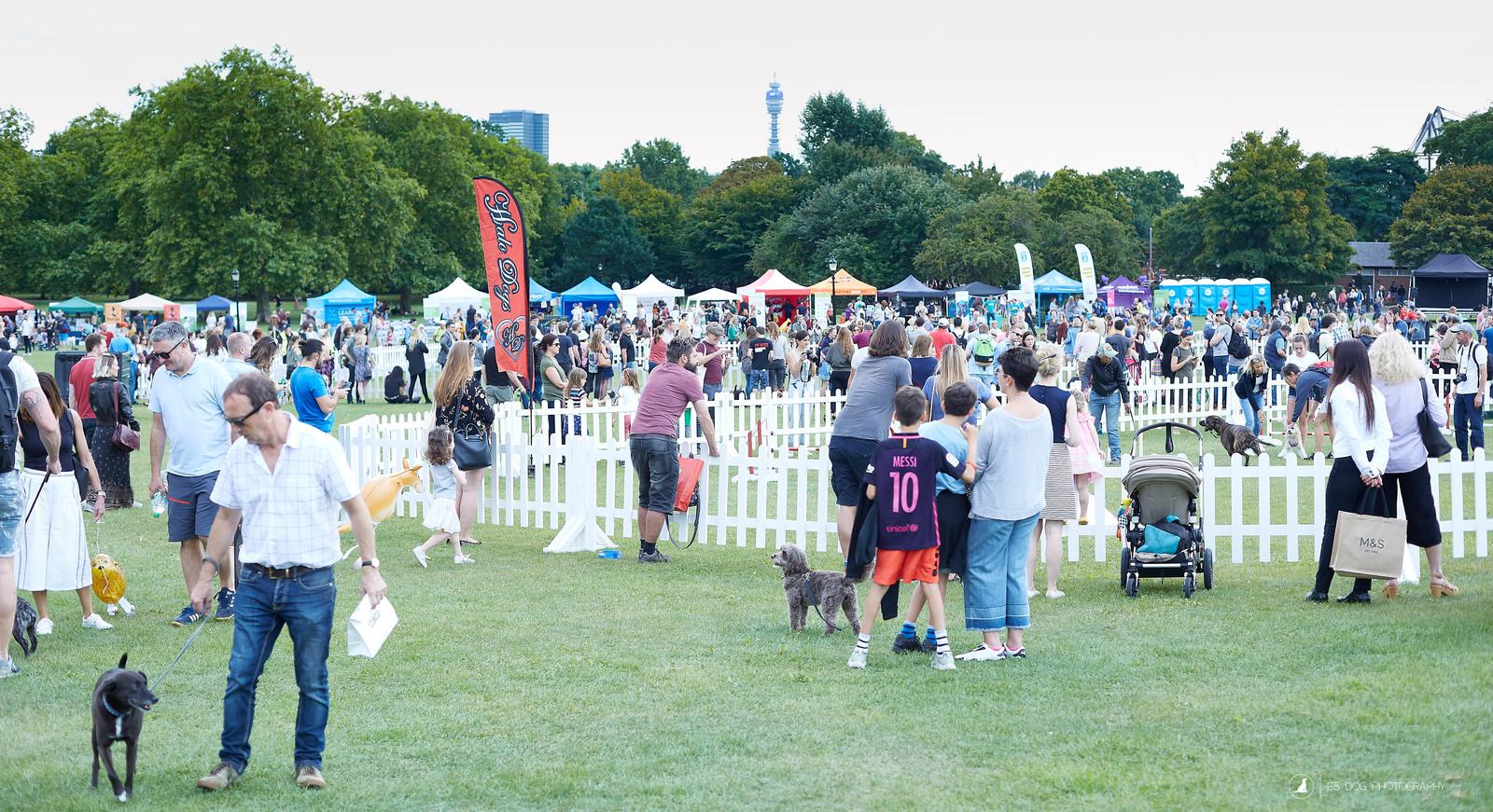 Dog Show Primrose Hill
