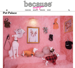 Pet Palace by Because London
