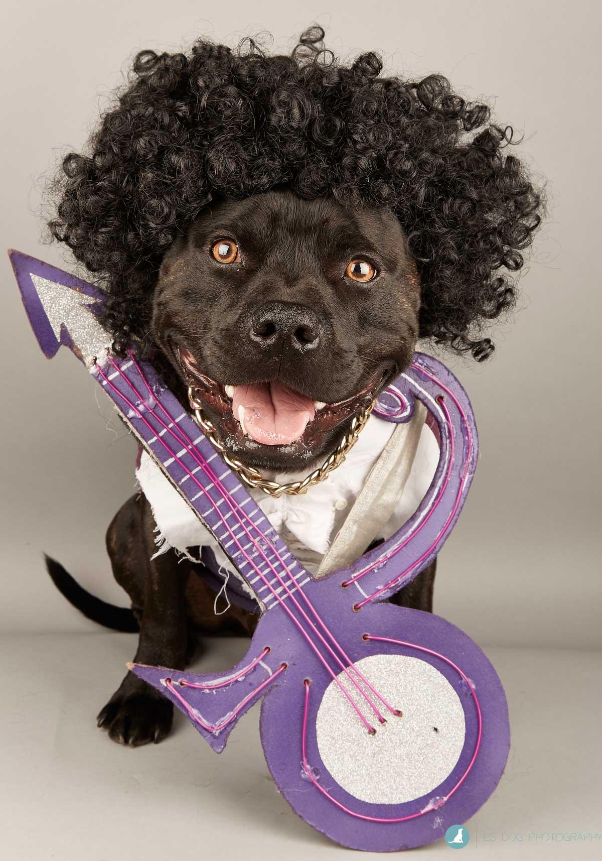 Rufio aka Prince