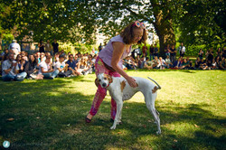 E5-Dog-Photography-All-Dogs-Matter-Visions-Festival-Hackney-2016-22