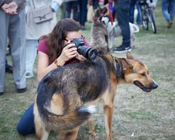 E5_Dog_Photography_PupAid_Primrose_Hill_2016_003