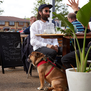 Dog's Day Out at the Shane Canal Side - 10