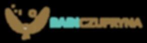 Rain-Czupryna-Logo-White-BG.png