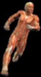 MedicoQuiropractico,Medicoquiropractico,Médicosquiropracticos,Quiropráctico,Herniadiscal,Quiropraxia,Quiropráctico,quiropracticodf,medicoquiropráctico,centroquiropractico