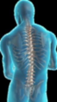Médico quiropráctico en el df, quiropractico en el df